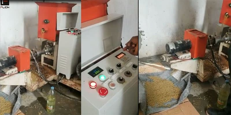 Cameroon 150kg floating fish feed pellet making machine