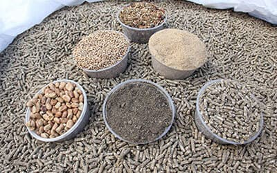 External factors affecting animal feed pellet machine production